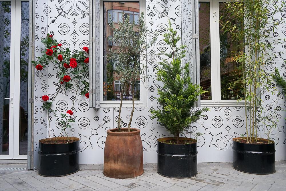 g.Vino Hotel & Restaurant Tiflis - cooles Design zum Wohlfühlen