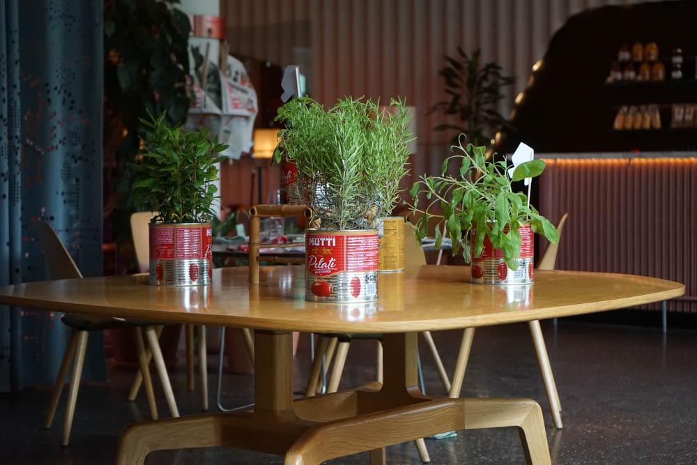 Kräuter in alten Tomatendosen - grandiose Idee
