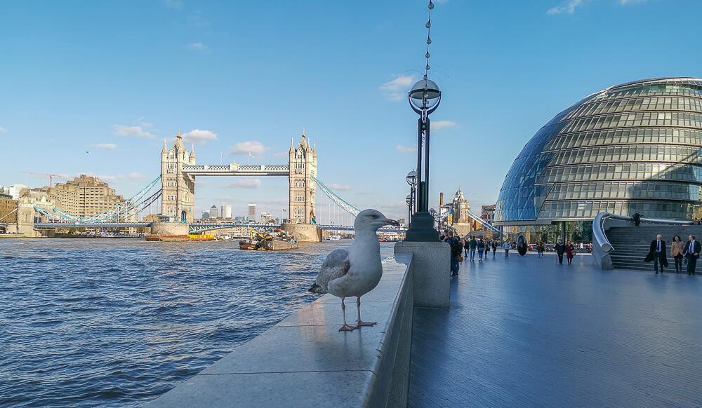 London entdecken - Die Themse