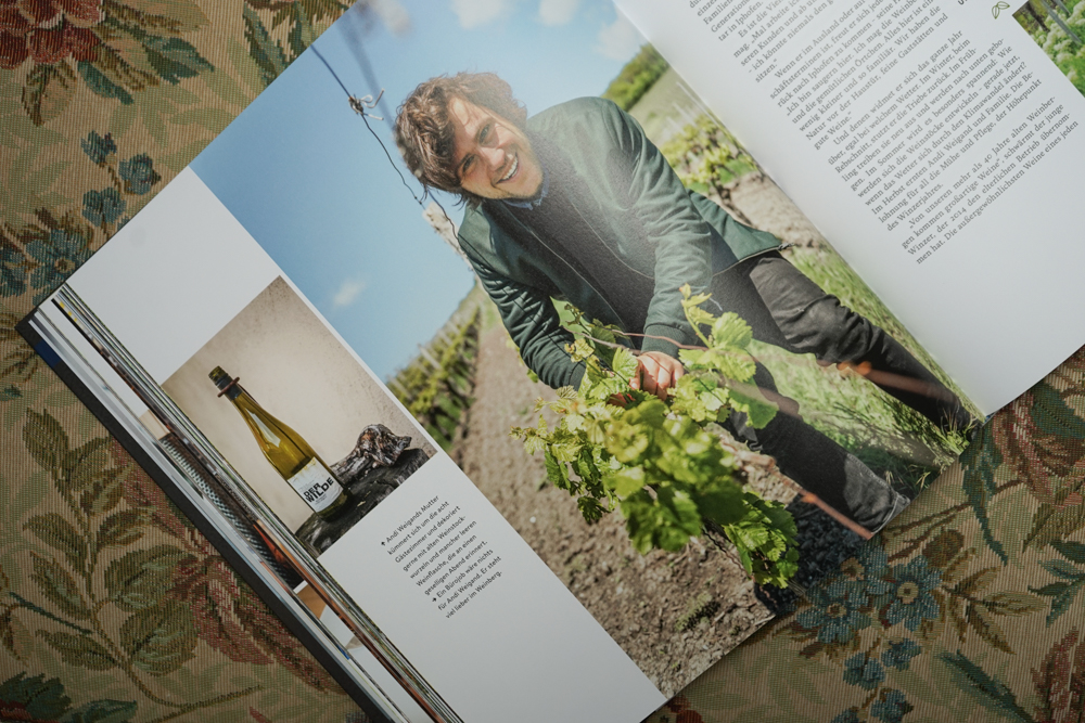 Zu Gast in Bayern - Weinbau in Bayern