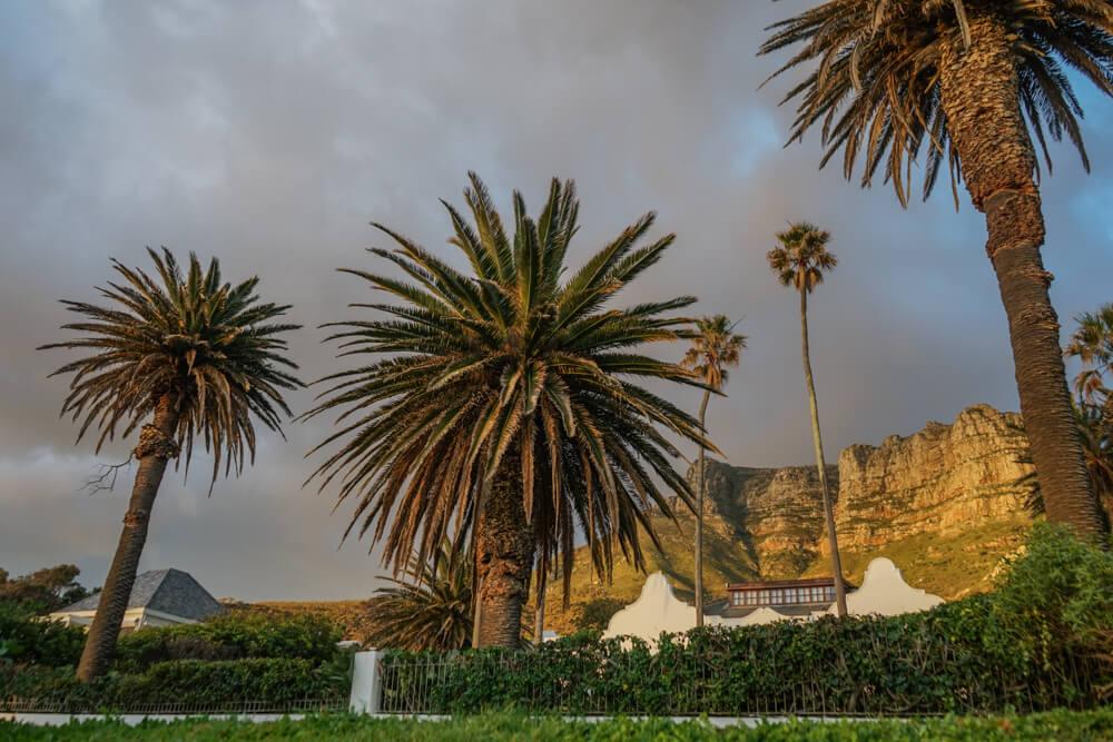 Constantia Glen Weingut, Südafrika - Einfahrt zum Weingut