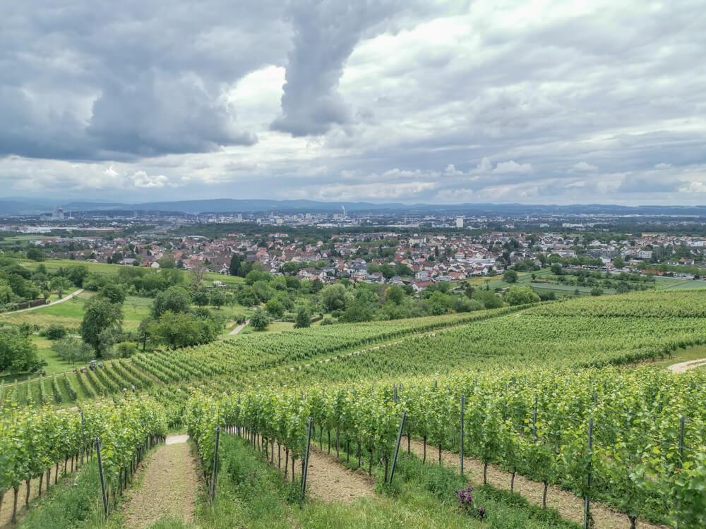 Hotel & Restaurant Krone, Weil am Rhein - prima Ausblick über die Weinberge