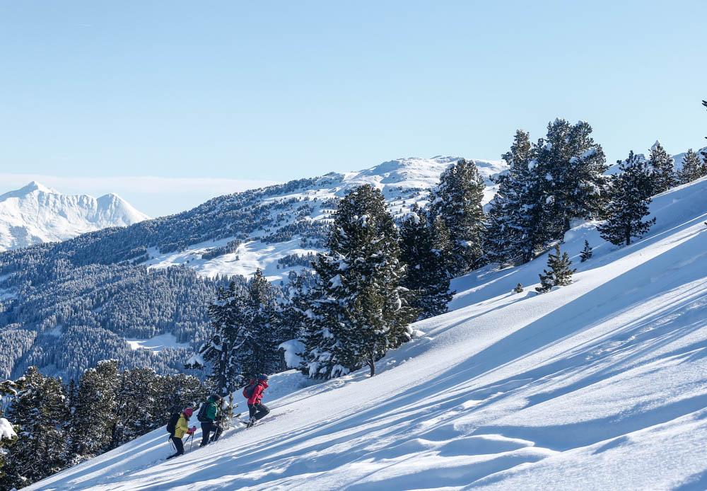 Schneeschuhwandern_Winter-aktiv_Tulfes-©Hall-Wattens.at-35-2