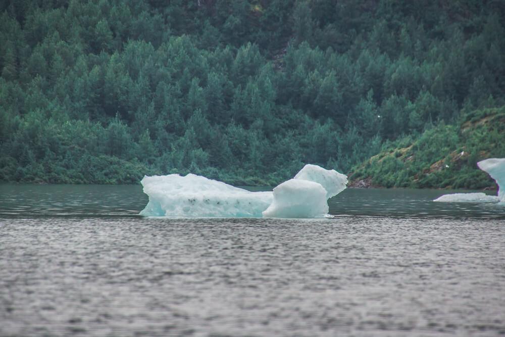 Mendenhall-Gletscher - Eisschollen
