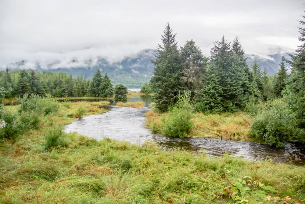 Mendenhall-Gletscher - grasgrüne Flußläufe