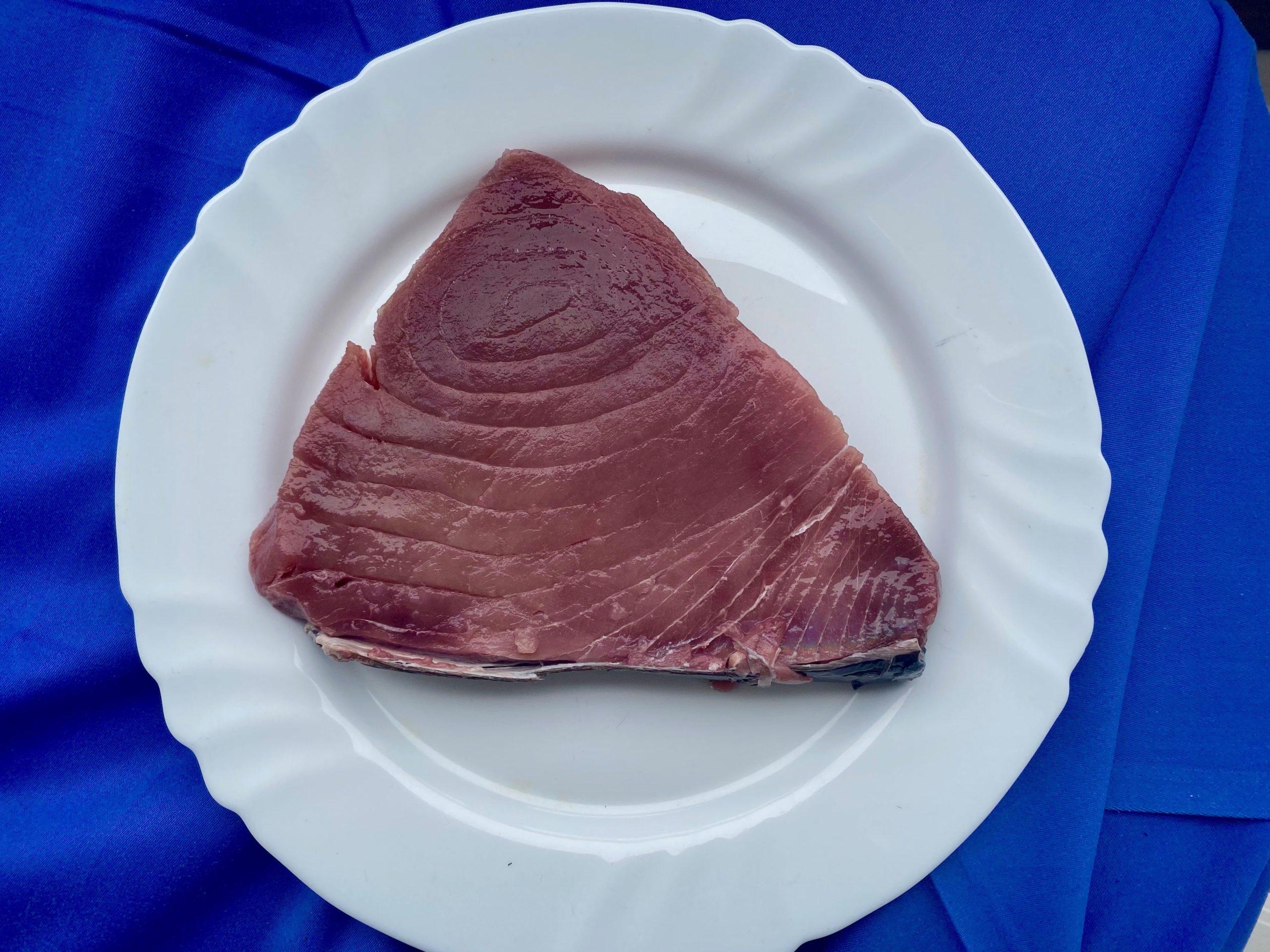 grandioser Thunfisch-min